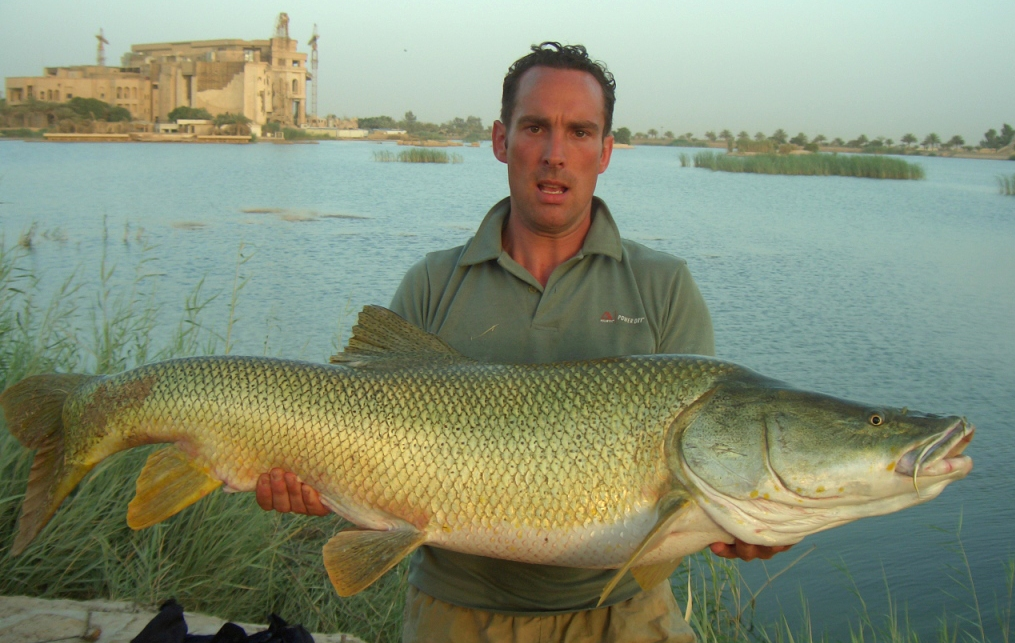 Barbus esocinus caught by Kevin Choules at Camp Slayer, Baghdad on floating bread bait, August 2005, released alive